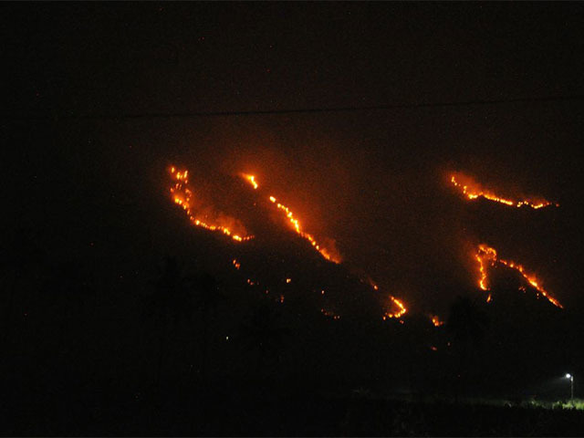 Operation on to rescue trekkers in Tamil Nadu forest fire