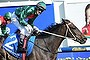 Melbourne Cup 2015: Favourite Fame Game on the drift as outsider subject of huge bet