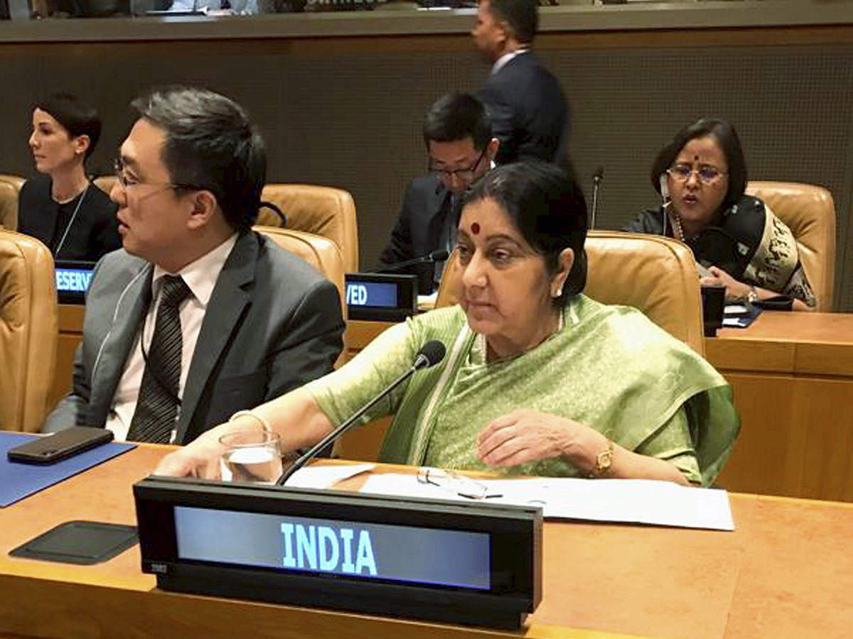India concerned over proposed changes to formula for dividing UN peacekeeping bill