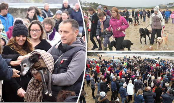 Hundreds joined Walnut the dog on final walk on Cornish beach before being put down