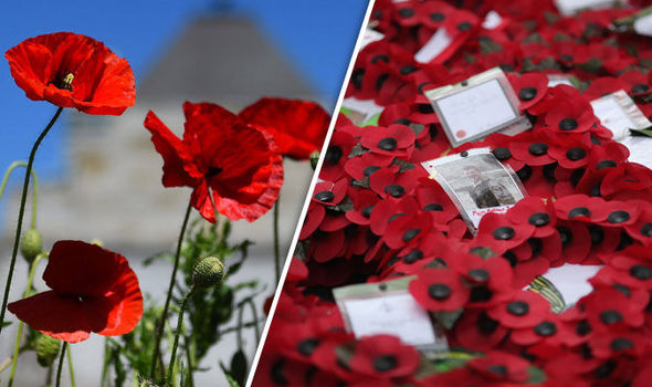 Armistice Day 2016: Why we wear poppies on Remembrance Day
