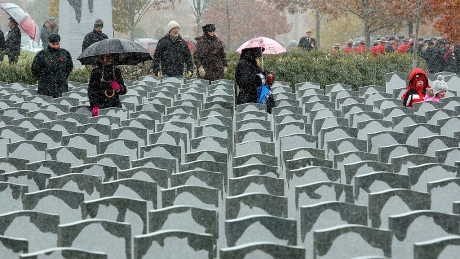 Graves of 45,000 veterans in disrepair due to funding shortfall: audit