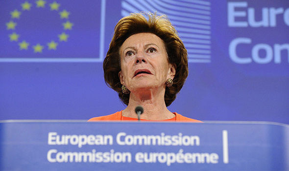Ex-EU commissioner was director of offshore Bahamas firm WHILE she worked in Brussels