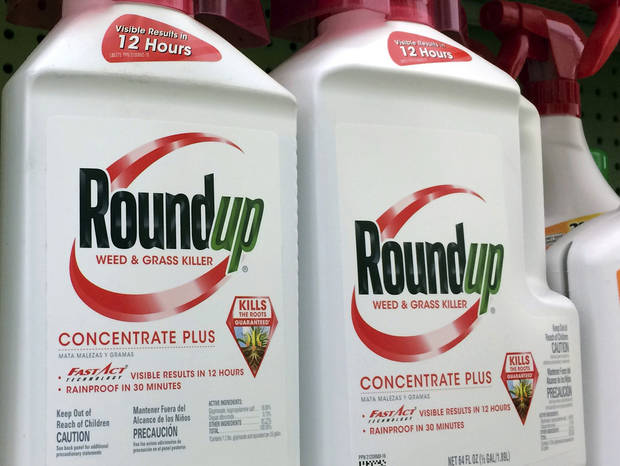 The Latest: Judge weighs jury $289 million Monsanto verdict