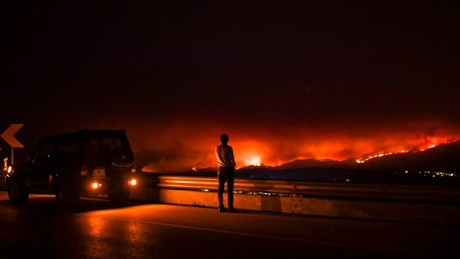 43 dead in central Portugal forest fires